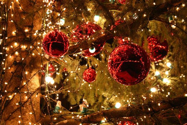 Foto Di Natale.Alpignano Si Immerge Nell Atmosfera Delle Feste Con Il