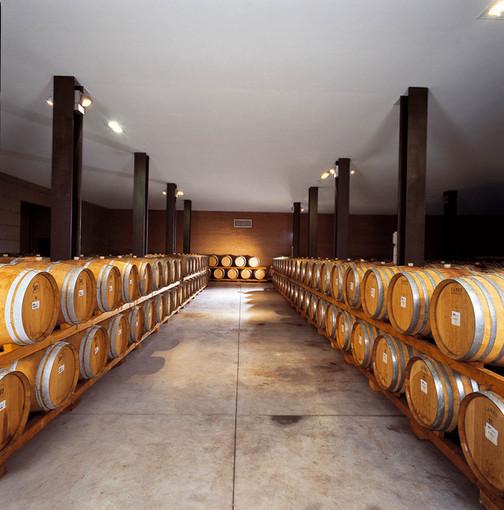 Confagricoltura Piemonte su COVID-19: situazione grave e risposte inadeguate