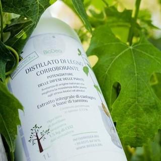I prodotti a marchio BioDea per un'agricoltura sostenibile presentati nei prossimi eventi di settore a settembre