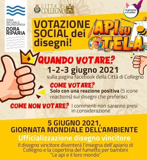 """""""Api su tela"""" a Collegno: dall'1 al 3 giugno si votano oltre cento disegni di bambini e bambine"""