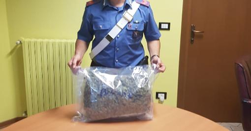 Alpignano, preso un corriere di droga: trasportava 1 chilo di marijuana sottovuoto
