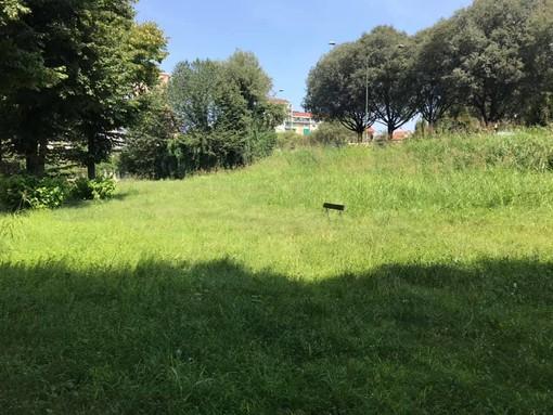 Rivoli, il Comune ordina la pulizia dei giardini privati. Altrimenti scattano le sanzioni