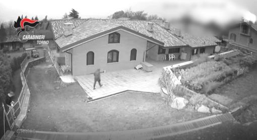 Da Rivoli a Perugia: smantellata la banda che svaligiava le case a colpi di bastone [VIDEO]