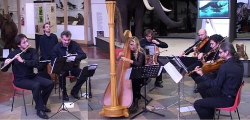 """Musica da camera di Alchimea all'Ecomuseo """"Sogno di Luce"""" di Alpignano"""