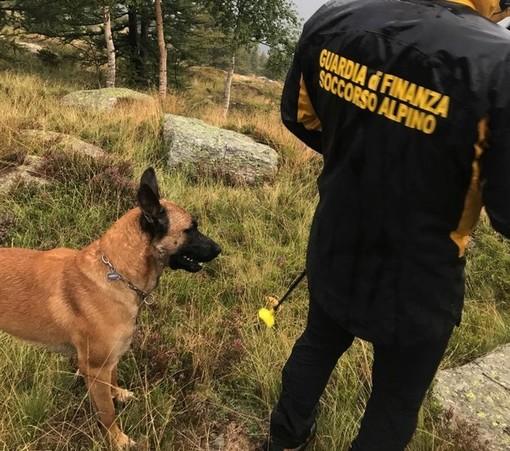 A Caselette si esercitano le unità cinofile del soccorso alpino della finanza